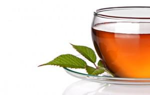 destaque_plantas-medicinais